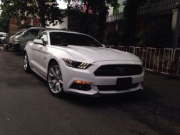 Ford Mustang GT - Premium 5.0L 2015 Coupe/Sports Cars