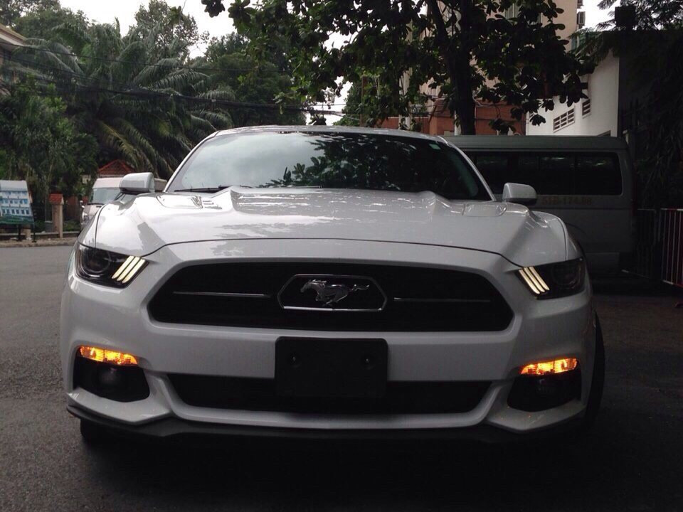 Ford mustang gt - premium 50l 2015 coupesports cars - 2