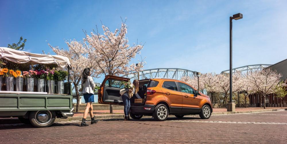 Ford ecosport mới 100 - 17