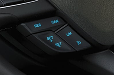 Ford ecosport mới 100 - 10